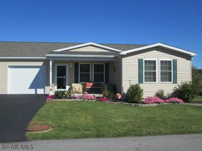 Hollidaysburg, Duncansville Single Family Home For Sale: 307 Goss Drive