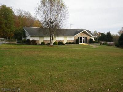 Ebensburg Single Family Home For Sale: 2501 Blue Goose Road