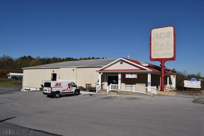 Blair County Commercial For Sale: 807-827 Route 764
