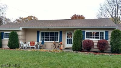 Hollidaysburg, Duncansville Single Family Home For Sale: 1170 Foot Of Ten Road
