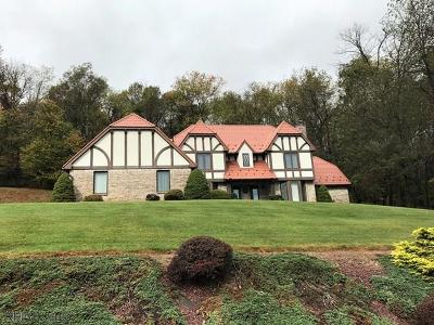 Single Family Home For Sale: 824 Barclay Drive