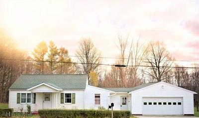 Ebensburg Single Family Home For Sale: 2462 New Germany Road