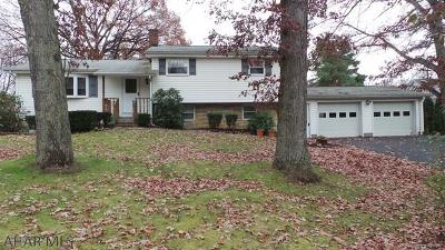 Hollidaysburg Single Family Home For Sale: 772 Brush Mountain Road