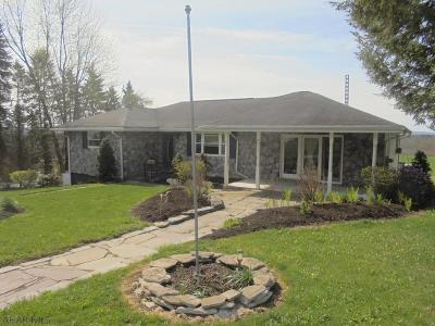 Single Family Home For Sale: 159 Kelly Drive