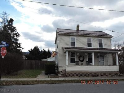 Hollidaysburg, Duncansville Single Family Home For Sale: 203 Franklin St