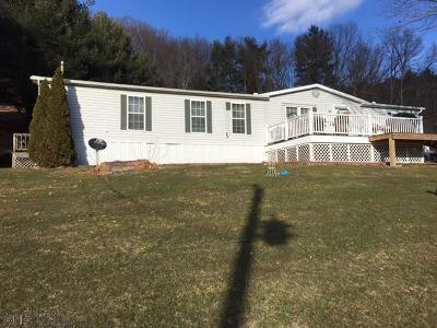 Single Family Home For Sale: 325 Koontz Road