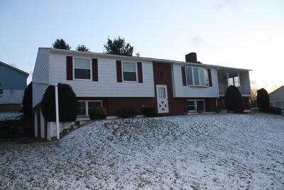 Williamsburg Single Family Home For Sale: 161 Cardinal Circle