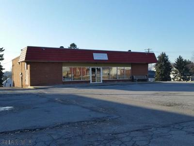 Blair County Commercial For Sale: 800 E Main Street