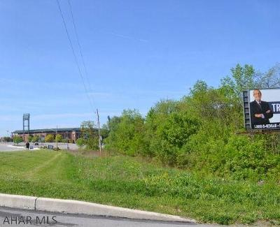 Blair County Residential Lots & Land For Sale: Park Avenue