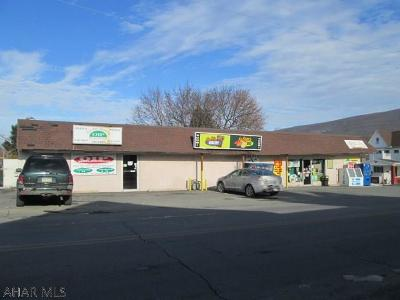 Blair County Commercial For Sale: 300 E Grant Avenue