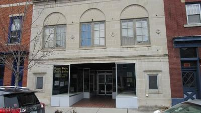 Blair County Commercial For Sale: 317 Allegheney St