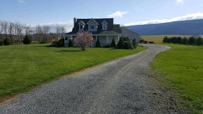 Martinsburg, Roaring Spring, East Freedom, New Enterprise, Woodbury Single Family Home For Sale: 228 Andrew Ave