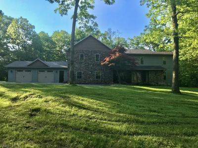 Hollidaysburg Single Family Home For Sale: 260 Campbell Hill Road