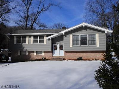 Tyrone Single Family Home For Sale: 616 Pamela Street