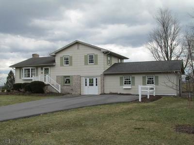 Hollidaysburg, Duncansville Single Family Home For Sale: 524 Castle Drive