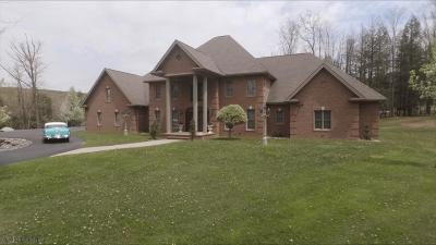 Blair County Single Family Home For Sale: 4448 Admiral Peary Highway