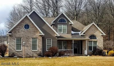 Duncansville PA Single Family Home For Sale: $420,000
