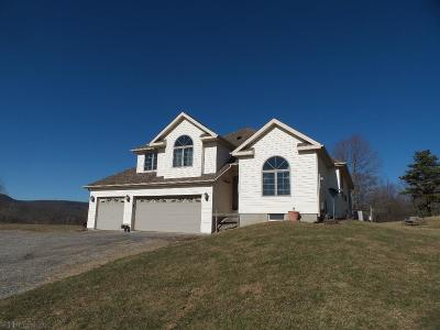 Blair County Single Family Home For Sale: 361 Pacanowski Lane