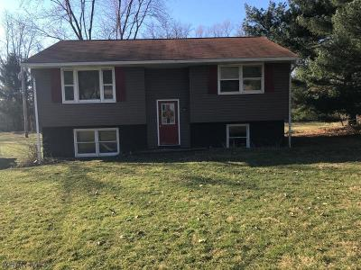 Martinsburg, Roaring Spring, East Freedom, New Enterprise, Woodbury Single Family Home For Sale: 333 Hipples Cave Road
