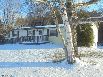 Ebensburg Single Family Home For Sale: 160 Skyline Drive