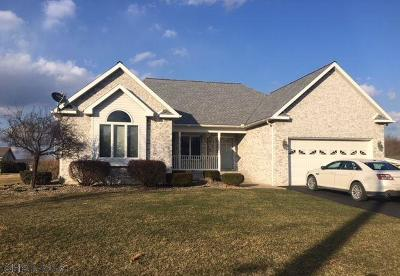 Single Family Home For Sale: 154 Parkview Drive