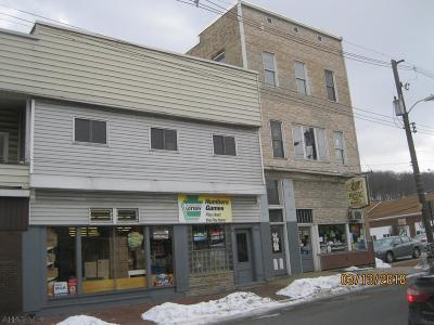 Commercial For Sale: 457 Magee Ave