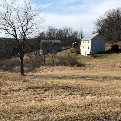 Single Family Home For Sale: 897 Messersmith Road