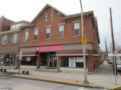 Commercial For Sale: 323 Allegheny Street