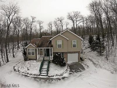 Claysburg Single Family Home For Sale: 413 Little Valley Road