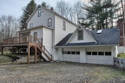 Ebensburg Single Family Home For Sale: 232 Trout Lane