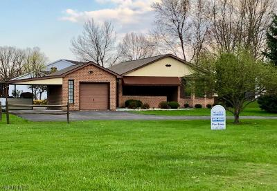 Hollidaysburg, Duncansville Single Family Home For Sale: 217 Tree Lane