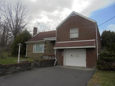 Ebensburg Single Family Home For Sale: 3699 New Germany Road