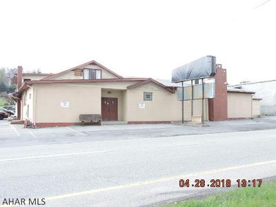 Blair County Commercial For Sale: 1324 Pleasant Valley Blvd