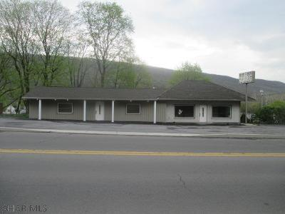Tyrone PA Commercial For Sale: $119,000