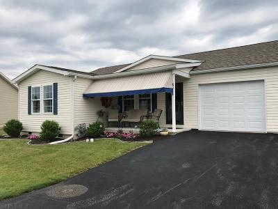 Hollidaysburg, Duncansville Single Family Home For Sale: 311 Goss Drive