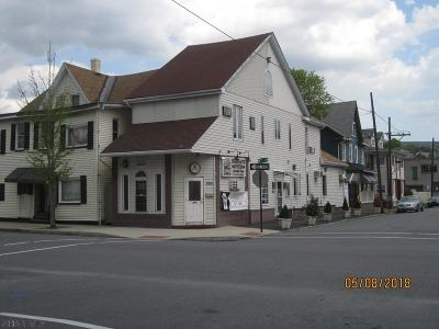 Blair County Commercial For Sale: 2327 6th Ave