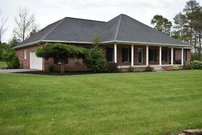 Blair County Single Family Home For Sale: 117 Maddox Dr