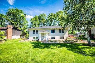 Hollidaysburg, Duncansville Single Family Home For Sale: 104 Dogwood Drive