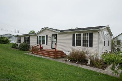 Altoona Single Family Home For Sale: 911 N 15th St.