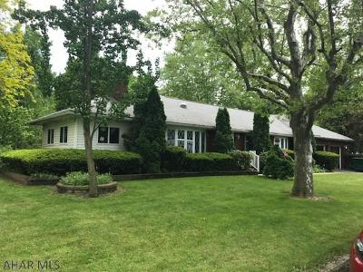 Hollidaysburg, Duncansville Single Family Home For Sale: 207 Lincoln Avenue