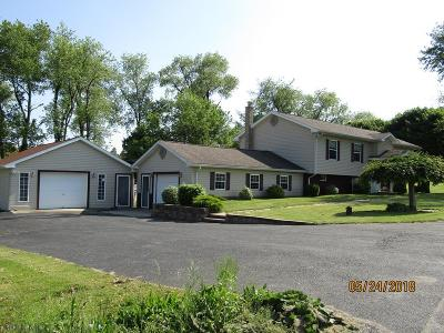 Single Family Home For Sale: 352 Brumbaugh Road
