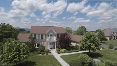 Blair County Single Family Home For Sale: 323 Ridgemont Drive