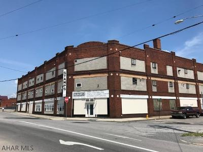Altoona Commercial For Sale: 2119 Beale Ave