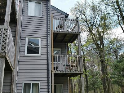 Claysburg Single Family Home For Sale: B202 Blue Knob, 185 E Valley Point