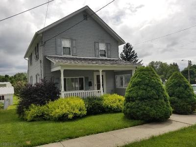 Ebensburg Single Family Home For Sale: 414 W Triumph St