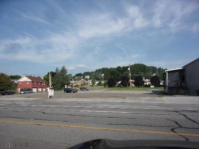 Altoona Commercial For Sale: 1324 Pleasant Valley Blvd