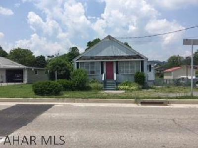 Duncansville Single Family Home For Sale: 809 Route 764