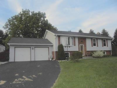 Ebensburg Single Family Home For Sale: 1066 Winterset Road