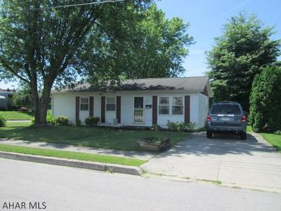 Roaring Spring Single Family Home For Sale: 838 Williams Street