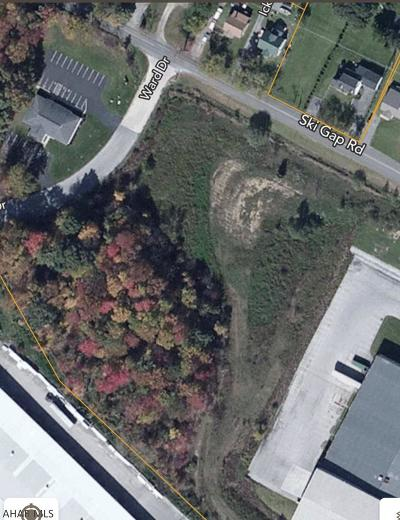 Blair County Commercial For Sale: Off Ski Gap Road #lot11